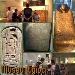 Diversas atividades e cursos no Museu Egípcio de Barcelona