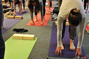 Imagem de alunos praticando Yoga Iyengar