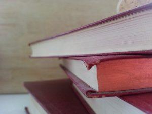 Muitos dos livros de segunda mão em Barcelona não são encontrados em outras cidades