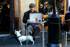 Saber os locais que permitem a entrada de cachorros é essencial em Barcelona