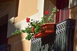 Como decorar a varanda - flores