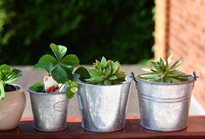 Como decorar a varanda - plantas