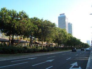 Imagem de rua ao lado do Parc del Port Olímpic, em Barcelona