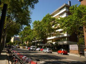 Imagem de apartamentos e árvores em uma rua de Sarrià