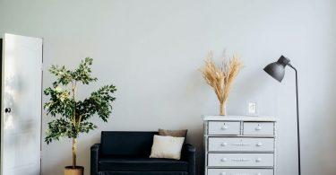 Uma sala de estar decorada e confortável